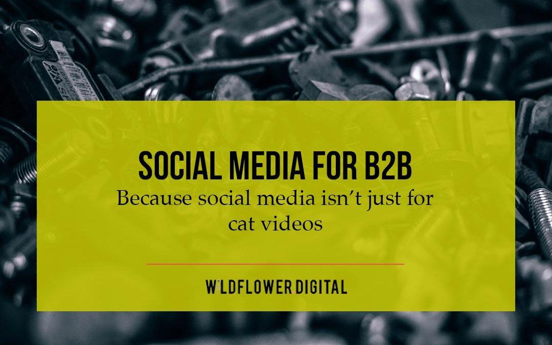 Social Media for B2B Companies